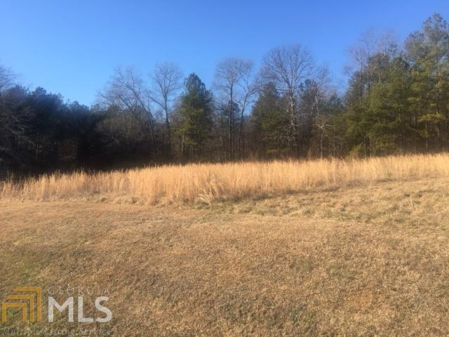 Land Lot - Kingston, GA (photo 3)