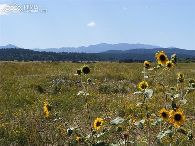 Land - Colorado City, CO (photo 1)