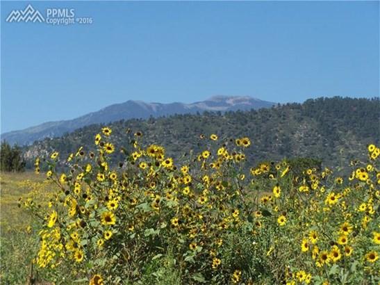 Land - Colorado City, CO (photo 4)