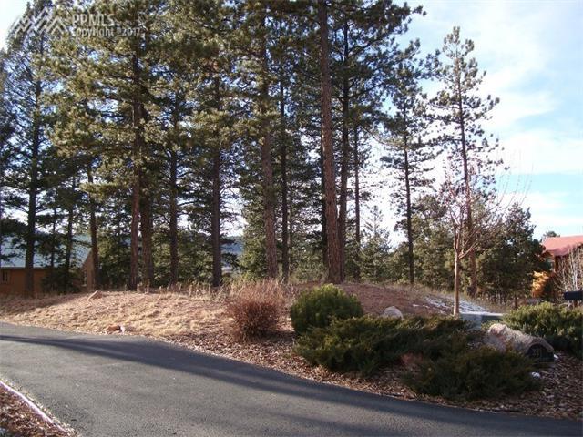 Land - Woodland Park, CO (photo 1)