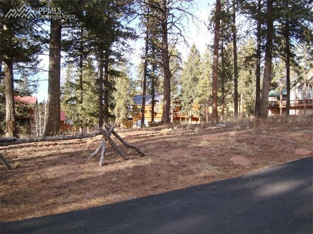 Land - Woodland Park, CO (photo 2)