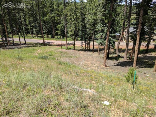 Land - Woodland Park, CO (photo 3)