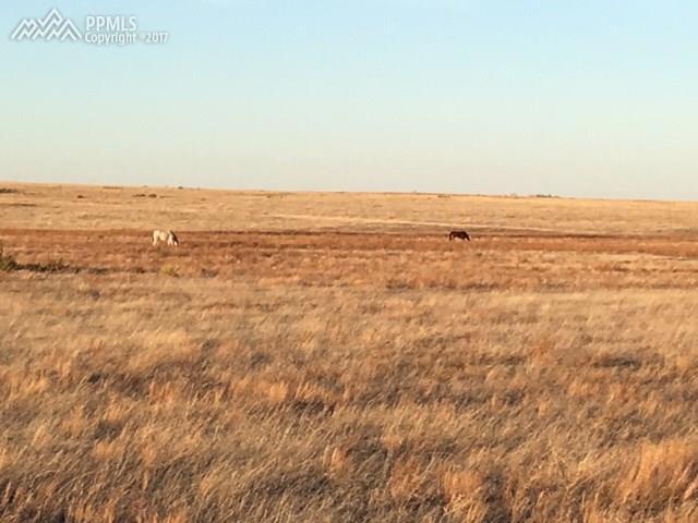 Land - Matheson, CO (photo 1)
