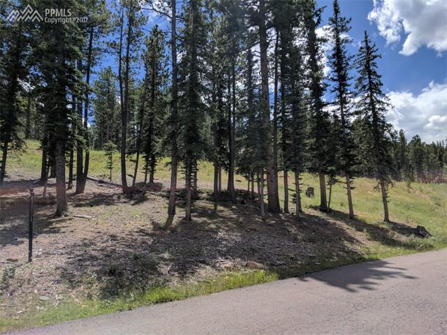 Land - Woodland Park, CO (photo 4)