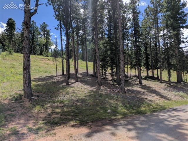 Land - Woodland Park, CO (photo 5)