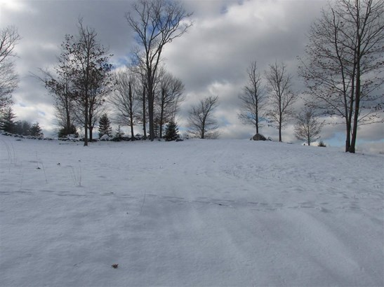 Land - Bennington, NH (photo 4)