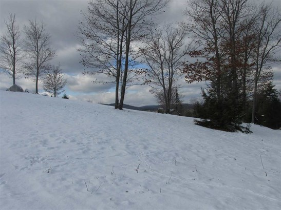 Land - Bennington, NH (photo 5)