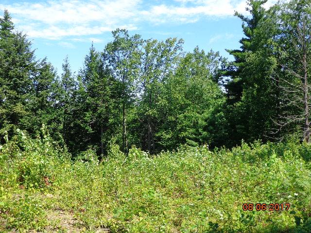 Land - Northfield, NH (photo 4)