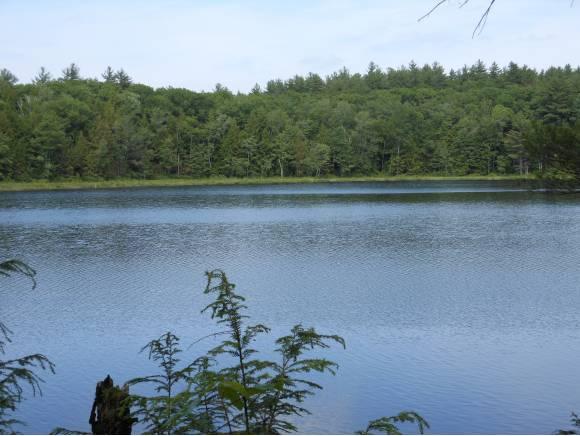 Land - New Hampton, NH (photo 3)
