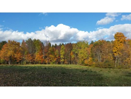 Land - Newport, NH (photo 3)