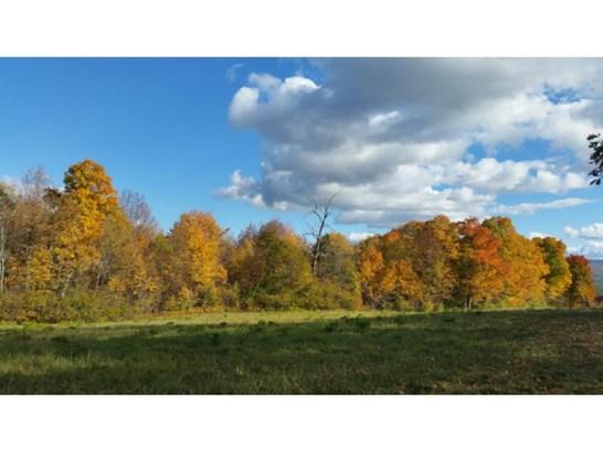 Land - Newport, NH (photo 4)