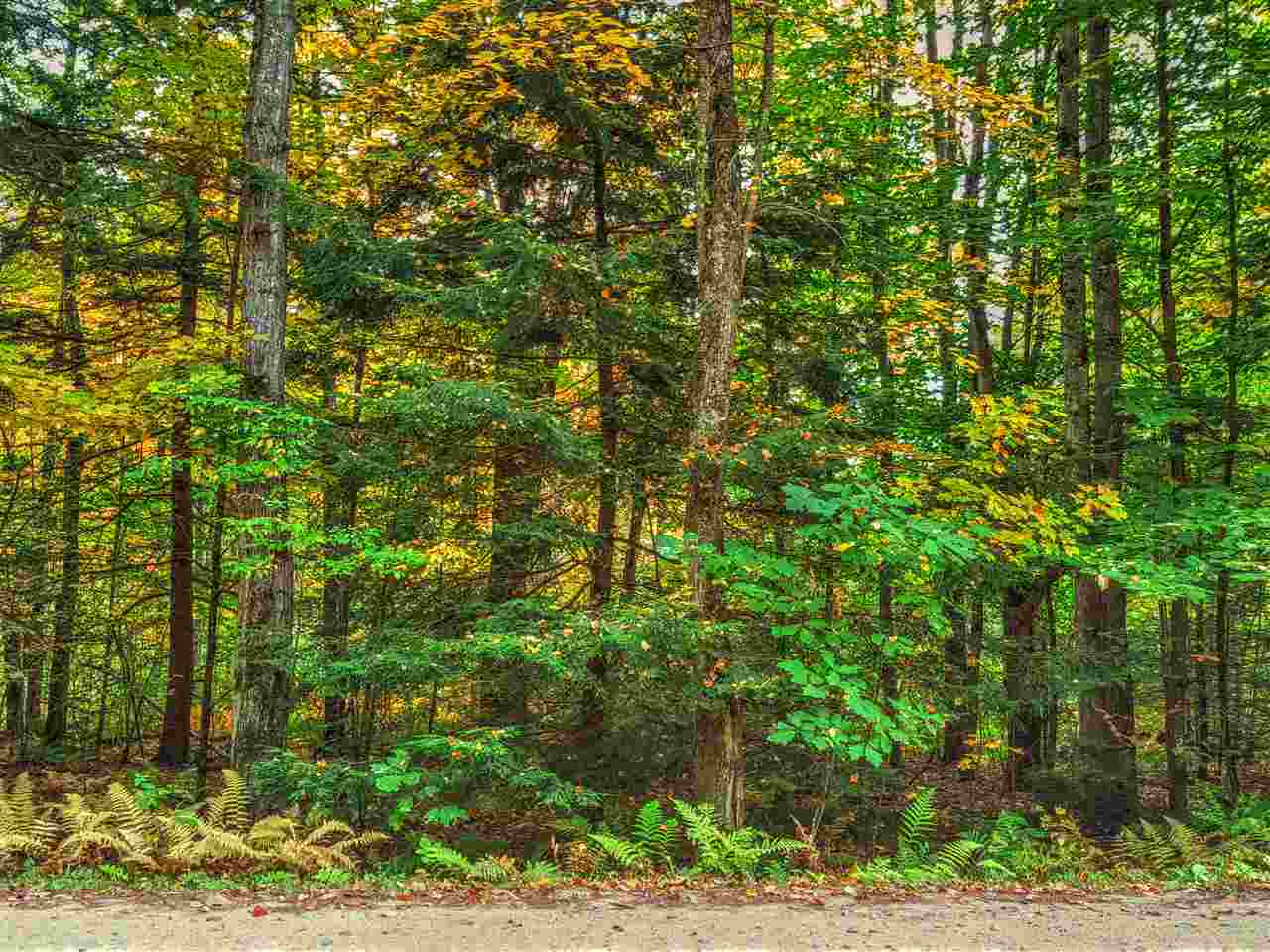 Land - Pittsfield, NH (photo 2)