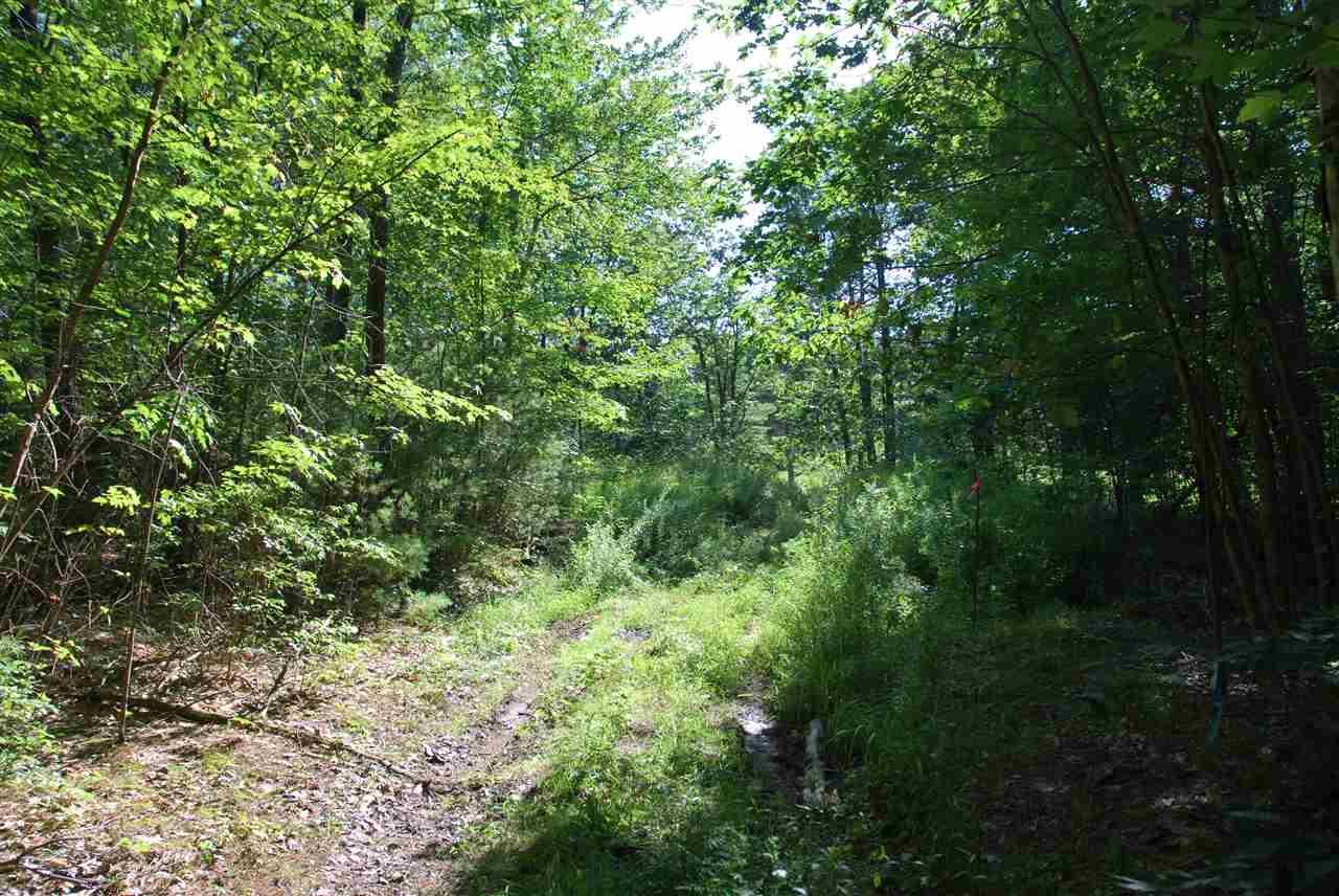 Land - Mason, NH (photo 3)