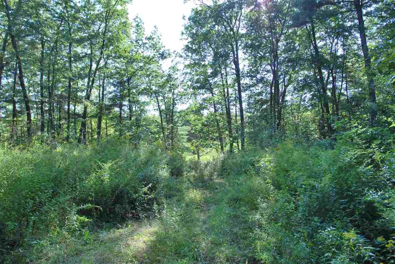 Land - Mason, NH (photo 4)