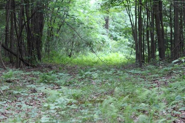 Land - Francestown, NH (photo 4)