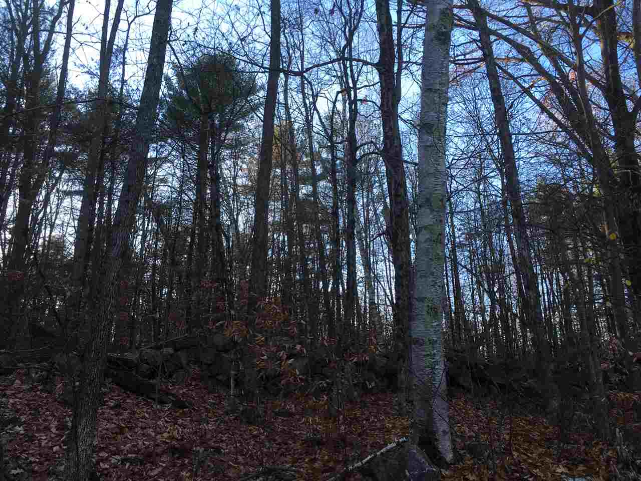 Land - Fitzwilliam, NH (photo 2)