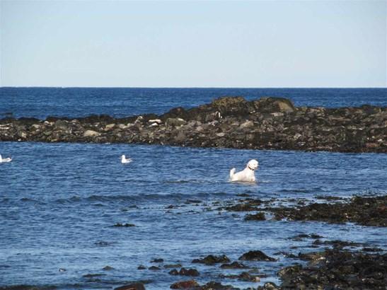 Cape, Single Family - Kittery, ME (photo 5)