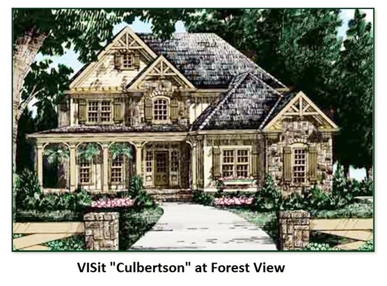 Colonial,Contemporary,Modern Architecture,Walkout Lower Level,Arts and Crafts,Craftsman - Single Family (photo 1)