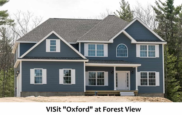 Colonial,Contemporary,Modern Architecture,Walkout Lower Level,Arts and Crafts,Craftsman - Single Family