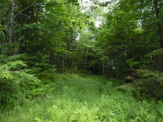 Land - Lempster, NH (photo 5)