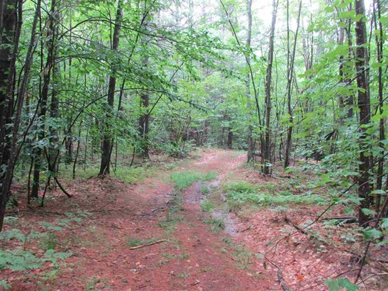 Land - Greenfield, NH (photo 2)
