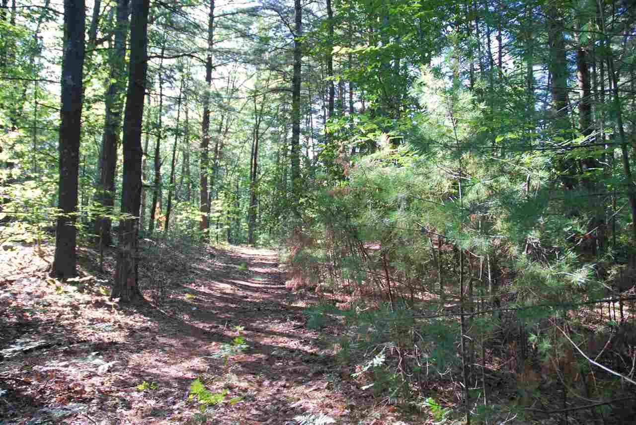 Land - Mason, NH (photo 5)