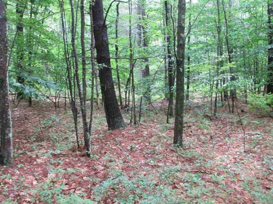 Land - Greenfield, NH (photo 3)