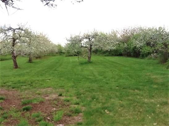 Land - Lyndeborough, NH (photo 3)