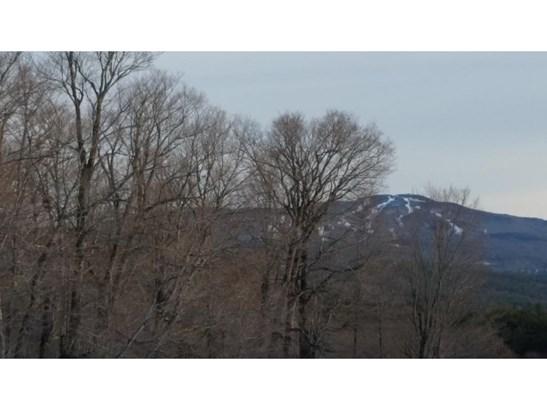 Land - Newport, NH (photo 2)