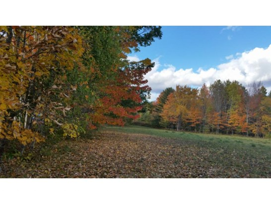 Land - Newport, NH (photo 5)