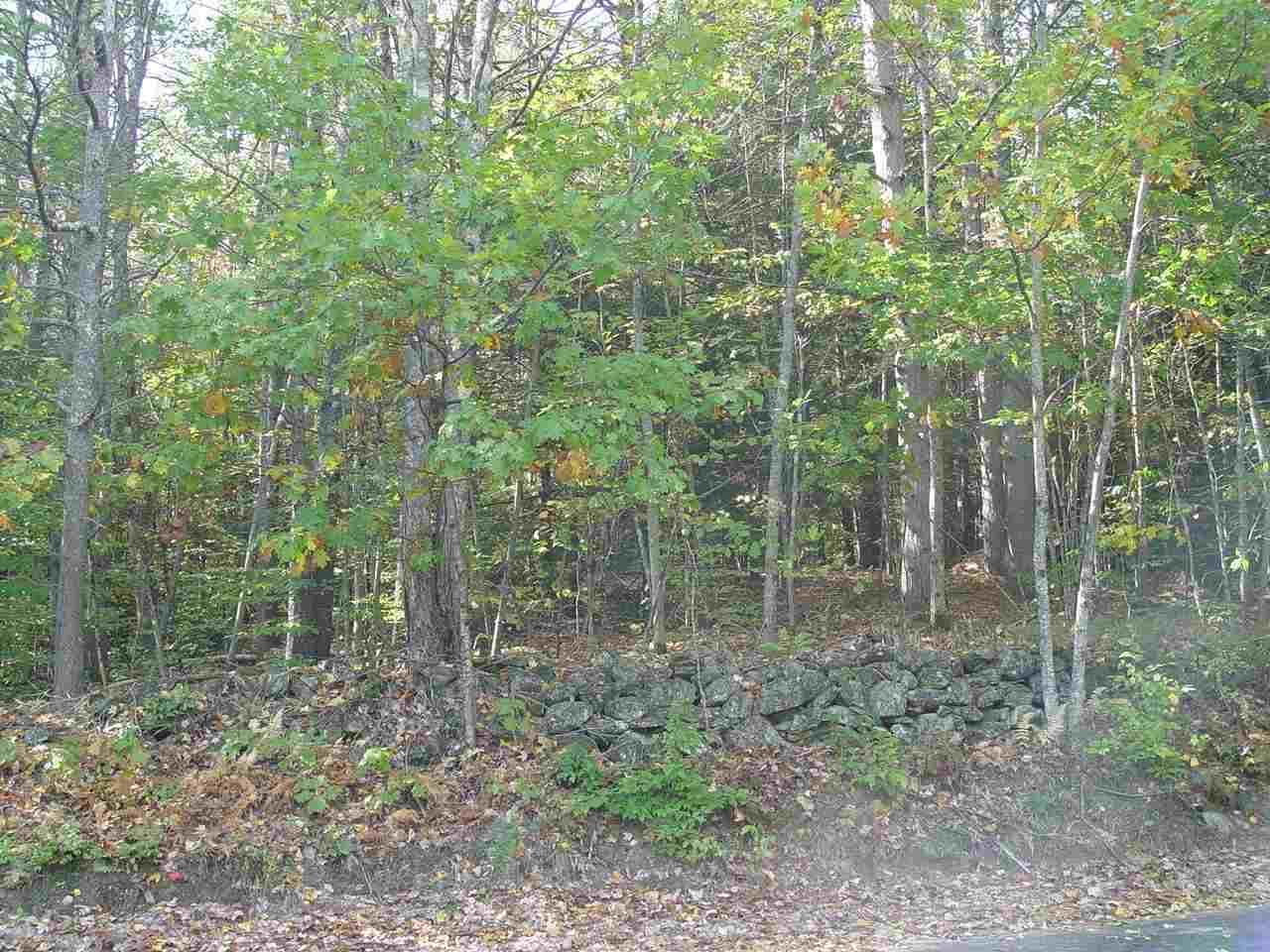 Land - Francestown, NH (photo 2)