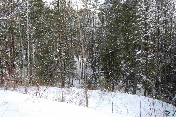 Single Family, Manuf/Mobile,Ranch - Weare, NH (photo 5)