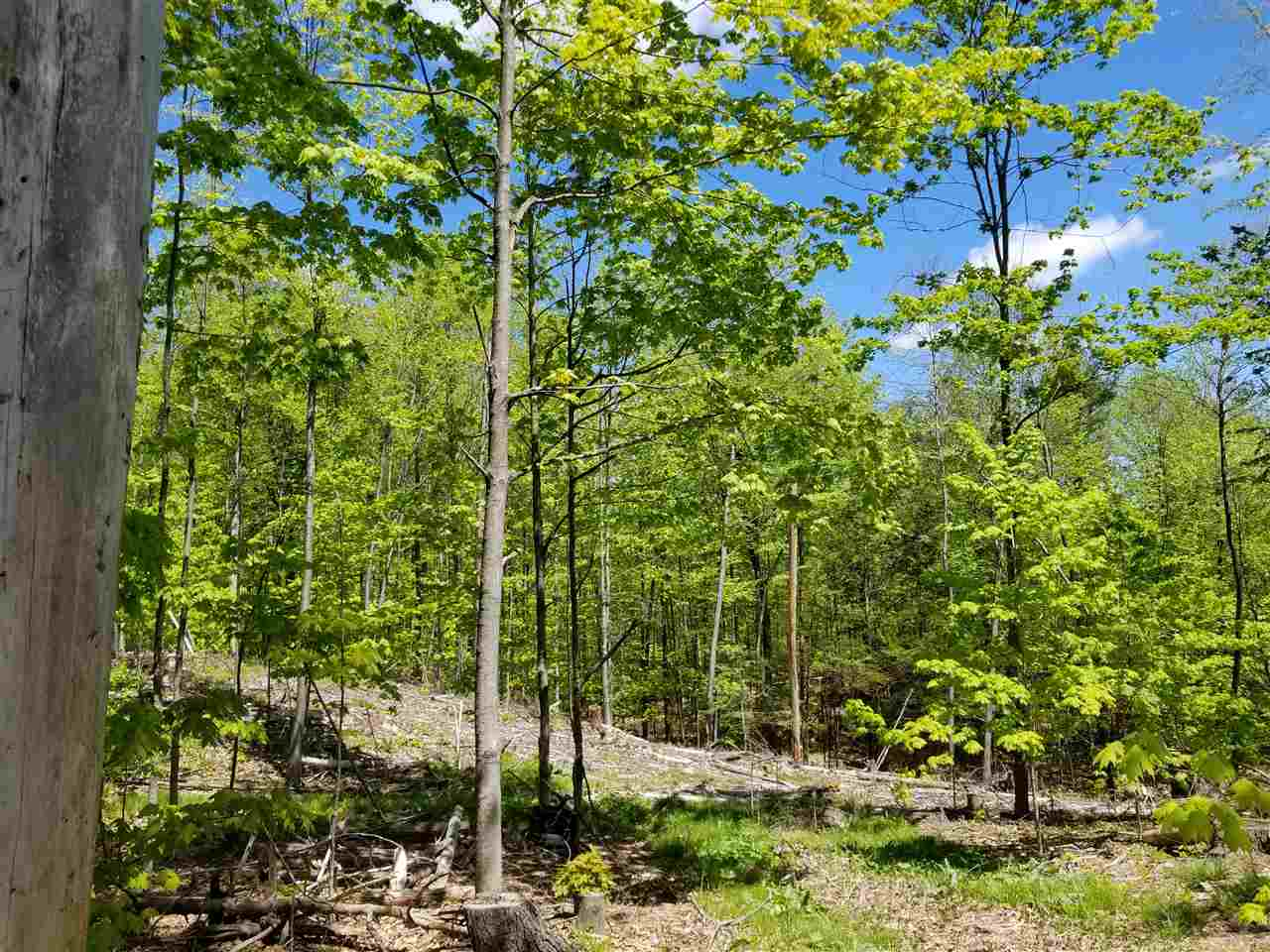 Land - Mont Vernon, NH (photo 5)