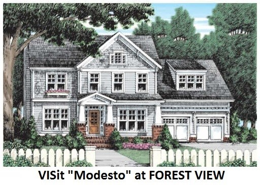 Colonial,Contemporary,Farmhouse,Walkout Lower Level,Arts and Crafts,Craftsman - Single Family