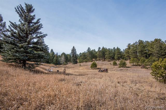 7325 Red Tail Way, Evergreen, CO - USA (photo 1)