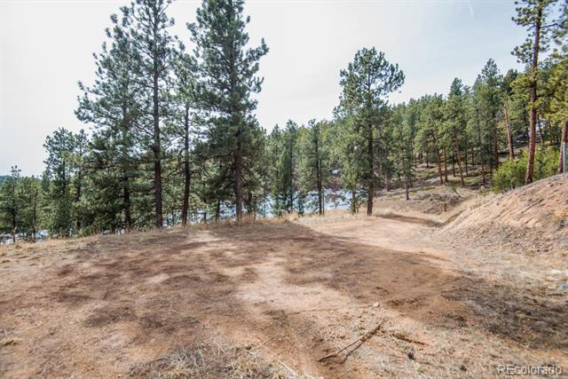 7325 Red Tail Way, Evergreen, CO - USA (photo 2)