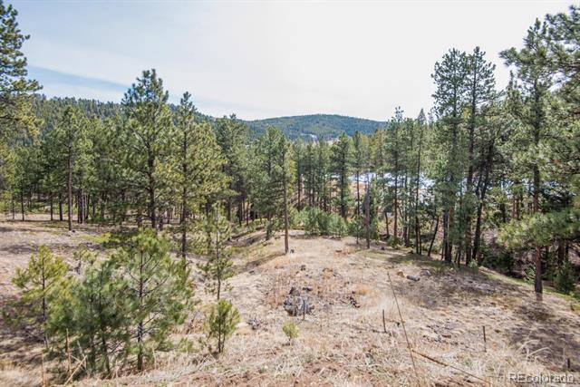7325 Red Tail Way, Evergreen, CO - USA (photo 3)