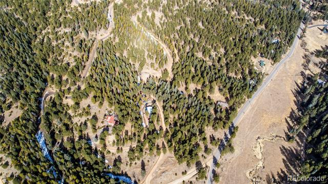 7325 Red Tail Way, Evergreen, CO - USA (photo 4)