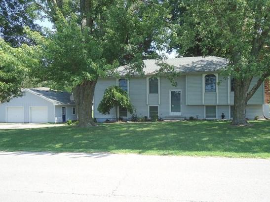 1112 N Raum Street, Lawson, MO - USA (photo 1)