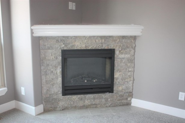 Fireplace (photo 5)