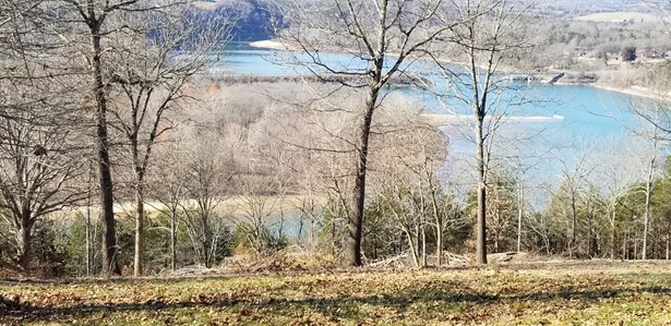 Table Rock Lake View with Clearing