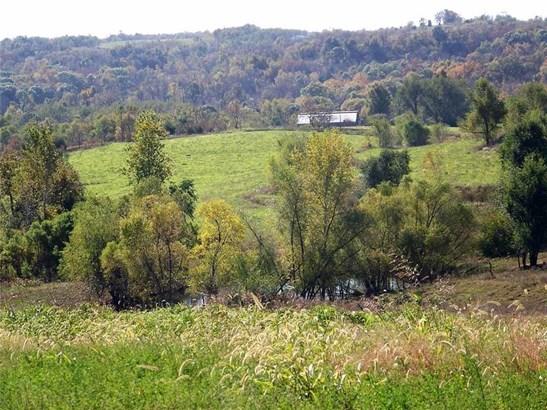 Beautiful View (photo 2)