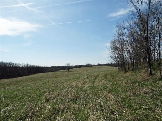 Big Field (photo 3)