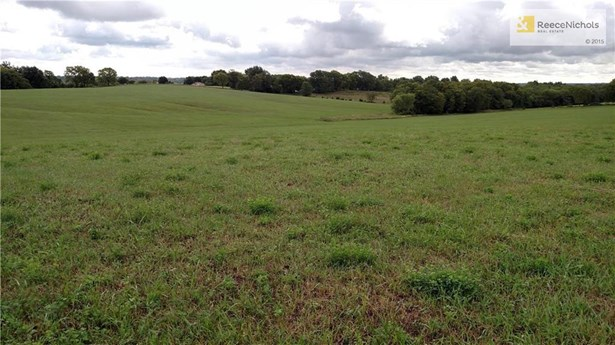 View from Porter Road- Lots of open land. (photo 4)