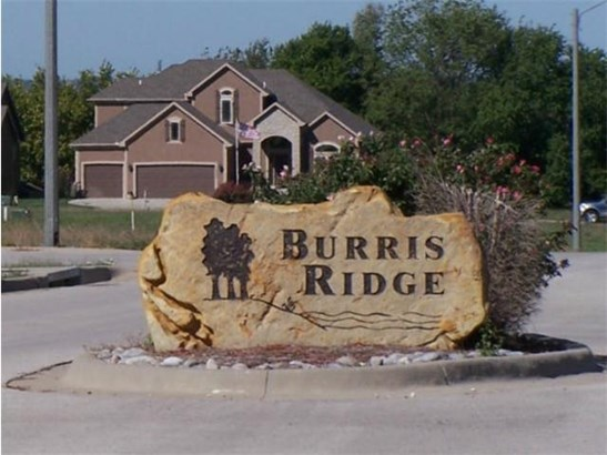 2202 Burris Drive, Harrisonville, MO - USA (photo 1)