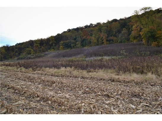 Sw 5 Acres On Henman Road, Rushville, MO - USA (photo 2)