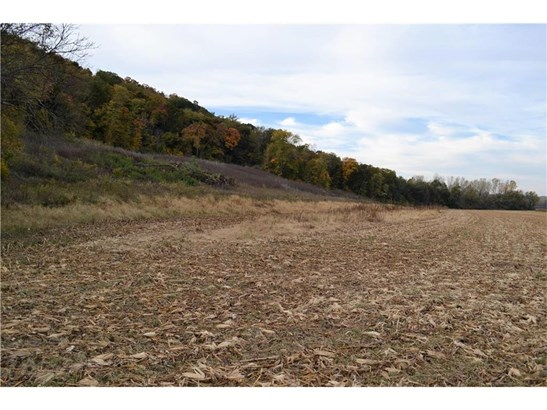 Sw 5 Acres On Henman Road, Rushville, MO - USA (photo 3)