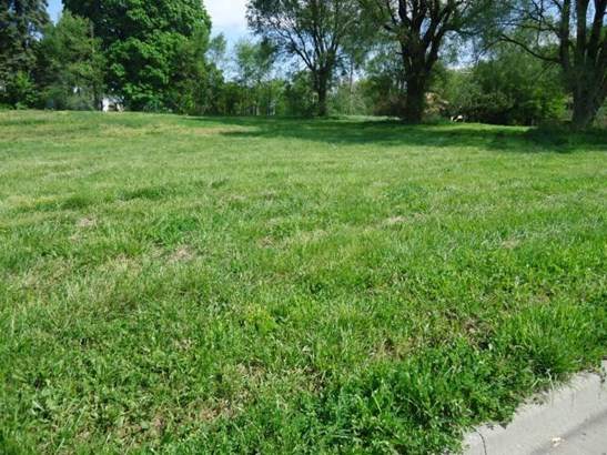 Lot 5 N Jesse James Road, Excelsior Springs, MO - USA (photo 2)