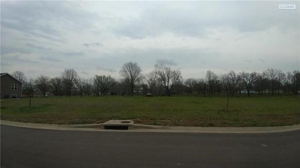 Blackberry Circle, Archie, MO - USA (photo 1)
