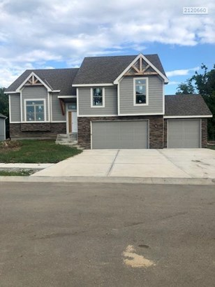 1407 Nw Red Oak Court, Grain Valley, MO - USA (photo 1)